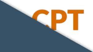 <mark>Custom Post Type en WordPress: qué son y cómo usarlos</mark> 3