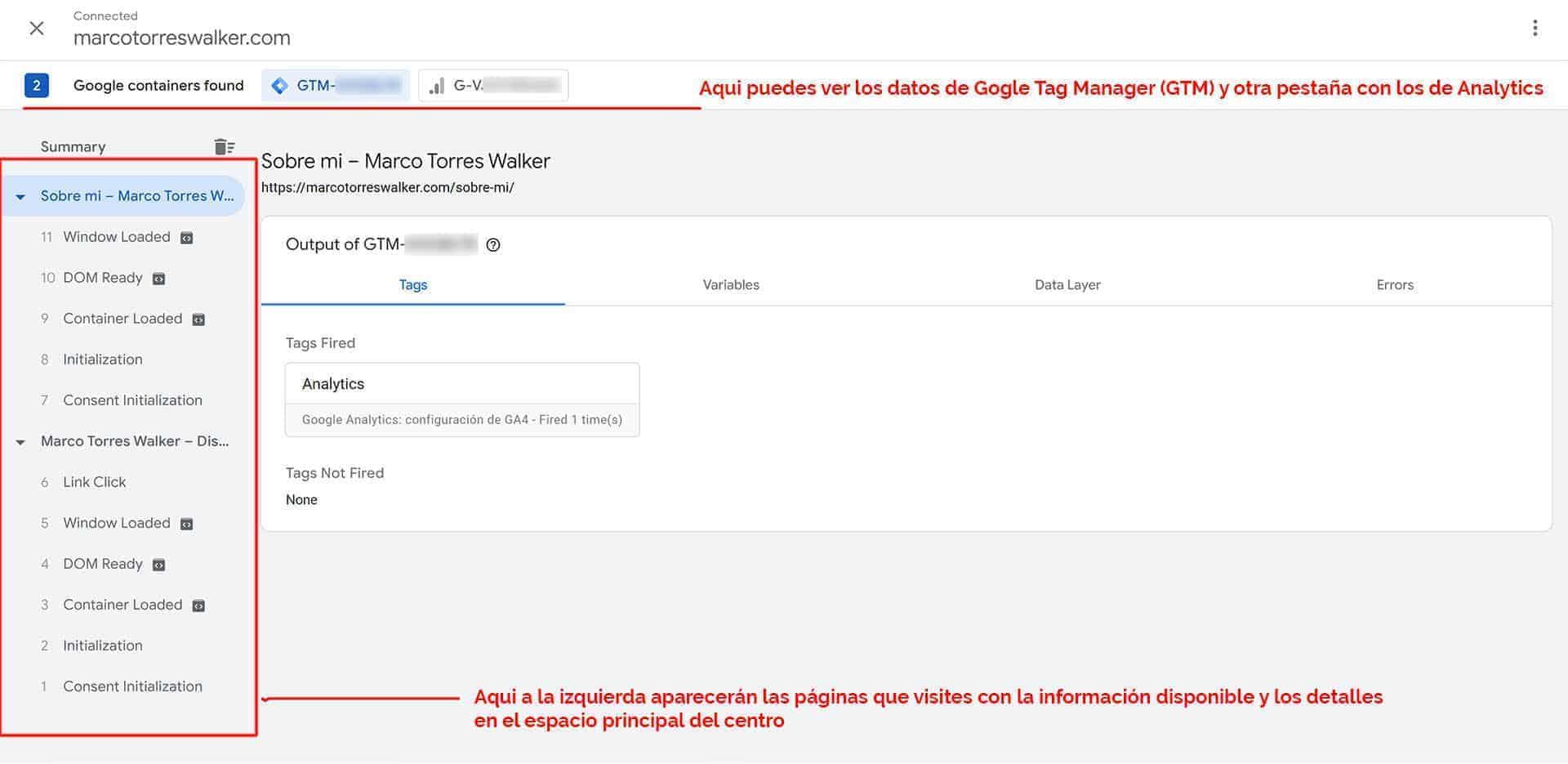 Vista previa de Google Tag Manager.
